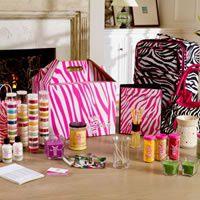 Pink Zebra Deluxe Kit - Erin Schenke